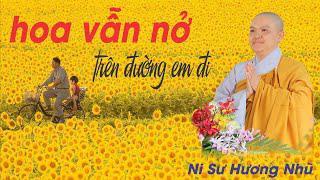 HOA VẪN NỞ TRÊN ĐƯỜNG EM ĐI || Ni Sư Hương Nhũ || Thiên Quang Media