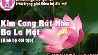 Kim Cang Bát Nhã Giảng Ký (Tập 171)