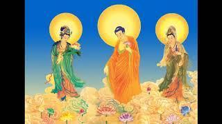 Kinh Hoa Nghiêm (84-107) Tịnh Liên Nghiêm Xuân Hồng - giảng giải