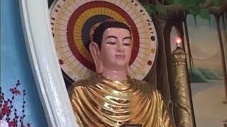SỰ KIỆN HOẰNG HÓA CỦA ĐỨC THÍCH CA MÂU NI - TT. Thích Quang Thạnh 2009