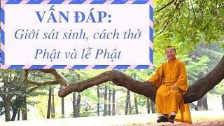 Vấn đáp: Giới sát sanh đối với Phật tử tại gia