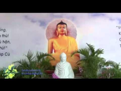 Vấn đáp: Trách nhiệm, vấn đề khi ngồi thiền (07/01/2012) video do Thích Nhật Từ giảng