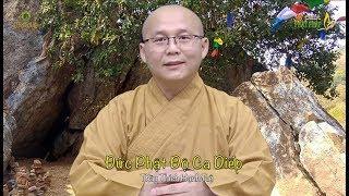 Đức Phật Độ Ca Diếp (181)