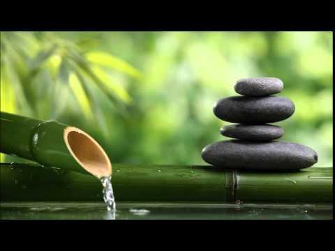 Thiền định - Hỏi đáp về Định sinh Tuệ - Niệm hơi thở - Quán