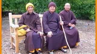 Người Phật tử với đạo