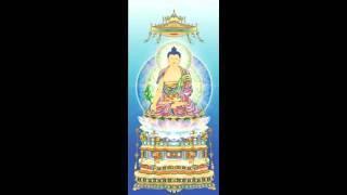 """Tụng """"48 Nguyện của Phật A Di Đà"""""""