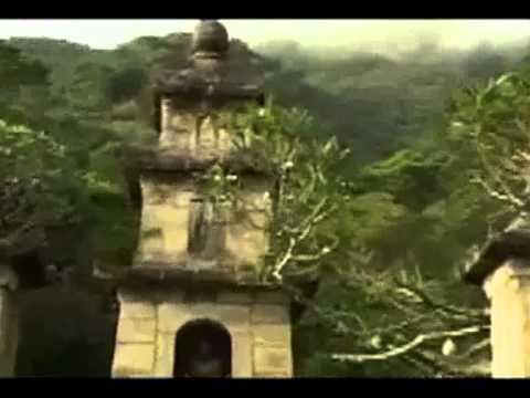Hoa Yên Tử