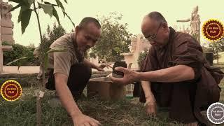 Thầy đã trở về đất phật với sứ mệnh trồng cây Bồ Đề, sau chuyến thăm Việt Nam