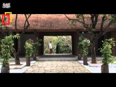 Thông điệp từ pho tượng A Di Đà chùa Phật Tích