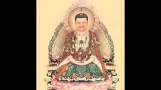 (5-5) Chuyện Niệm Phật Cảm Ứng - Lâm Kháng Trị