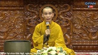[LIVESTREAM] ĐĐ.Thích Ngộ Phương trả lời vấn đáp trong khóa tu Thiền Tứ Niệm Xứ 14