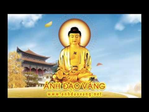 Kể Chuyện: Hào Quang Đức Phật