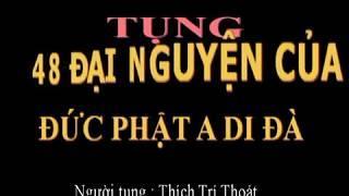 48 Đại Nguyện Của Đức Phật A Di Đà (Có Chữ)