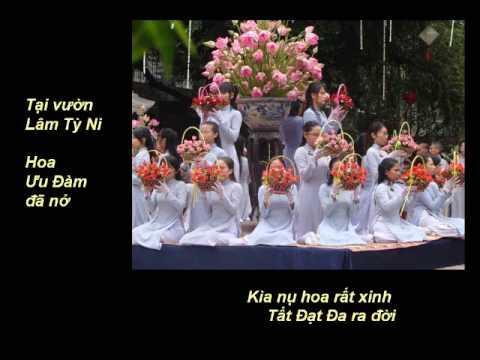 GĐPT - MỪNG PHẬT ĐẢN SANH - Nhạc Võ Tá Hân - Thơ Tuệ Kiên