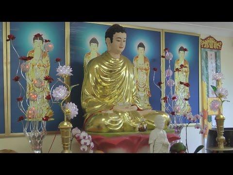 Phật Là Người Chỉ Đường