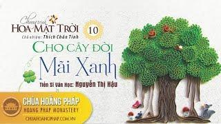 Hoa Mặt Trời kỳ 10 - Phật tử Phúc Lương Nhã