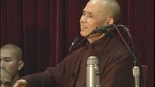 Phật giáo Việt Nam ngày nay qua cái nhìn tương tức - TS. Nhất Hạnh - PhatAm.com - 3