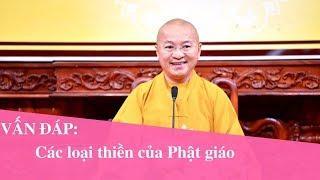 Vấn đáp: Các loại thiền của Phật giáo | Thích Nhật Từ