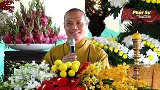 Ngôi Chùa Đích Thực - Thầy Trí Chơn giảng tại chùa Hoa Lâm, Đồng Tháp