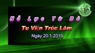 Nổ Lực Từ Bỏ - Thầy Thích Pháp Hòa ( Tu Viện Trúc Lâm, ngày 20.1.2019 )