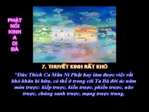 """Tụng """"Phật Nói Kinh A Di Đà"""" (Việt Văn) (Có Phụ Đề) (Mới)"""