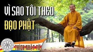 Vì sao tôi theo Đạo Phật (09/05/2009) video do Thích Nhật Từ giảng