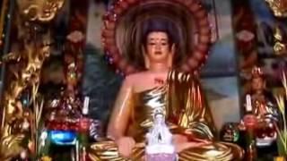 Kinh Phước Đức 6: Con đường an vui (01/08/2008) video do Thích Nhật Từ giảng