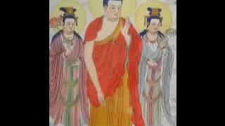 Niệm Phật Chuyển Hóa Tế Bào Ung Thư (Tác Giả: Pháp Sư Đạo Chứng) (Rất Hay)