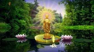 """Nhạc Niệm """"Nam Mô A Di Đà Phật"""" (Có Phụ Đề)"""