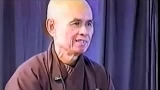 Công Phu Nở Đóa Sen Ngàn Cánh 50: Kinh A Di Đà 6 - Thầy Thích Nhất Hạnh