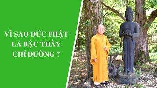 Vì sao Đức Phật là bậc thầy chỉ đường ? | Thích Nhật Từ