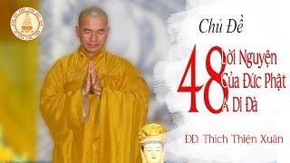 48 lời Nguyện của Đức Phật A Di Đà P.1 - ĐĐ. Thích Thiện Xuân