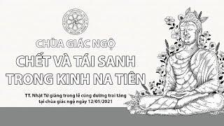 CHẾT VÀ TÁI SANH TRONG KINH NA TIÊN - TT. Thích Nhật Từ giảng tại chùa Giác Ngộ ngày 12/01/2021