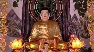 Theo Phật Phật Độ