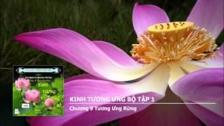 Đại Tạng Kinh (Nikaya) - Tương Ưng Bộ
