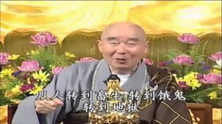 Tín Tâm Dao Động, Không Thể Vãng Sanh