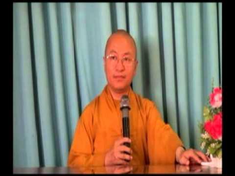 Triết học ngôn ngữ Phật giáo 09: Bản chất tham chiếu (15/06/2012) video do Thích Nhật Từ giảng