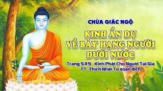 """Trực tiếp: Tụng Kinh """"Ẩn dụ về bảy hạng người dưới nước"""" tại chùa Giác Ngộ, ngày 02-05-2021"""