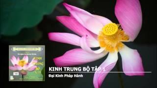 Kinh Trung Bộ tập 1 - Kinh Pháp Môn Căn Bổn