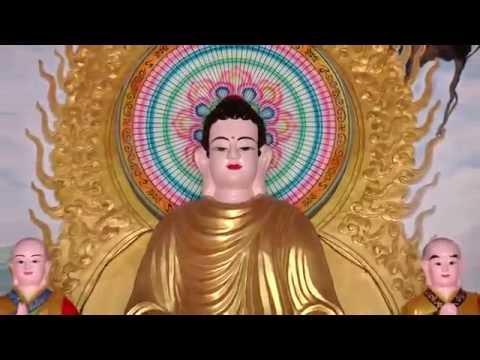 Niệm Phật Để Làm Gì, Làm Gì Để Niệm Phật
