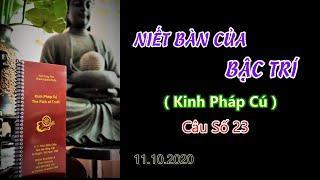 Niết Bàn Của Bậc Trí (Kinh PC 23)Thầy Thích Pháp Hòa.Tv Trúc Lâm.Ngày 11.10.2020