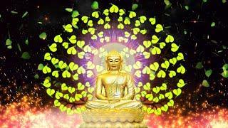 Tụng Kinh Bốn Ân Lớn Kinh Phật Cho Người Phật Tử Tại Gia tại Chùa Giác Ngộ ngày 18.01.202