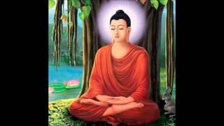 Thông Điệp của Đức Phật