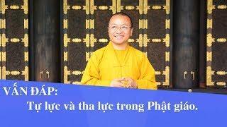 Vấn đáp: Tự lực và Tha lực trong Phật giáo | Thích Nhật Từ