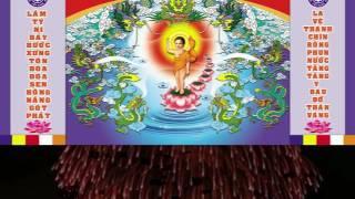 Ý nghĩa Phật đản sinh