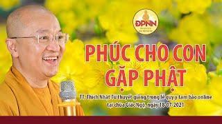 Là Phật tử mới nên nghe - PHÚC CHO CON GẶP PHẬT - TT. Thích Nhật Từ