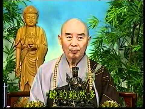 Thần Thông Tự Tại Cúng Dường Chư Phật (Tập 111, Trích Kinh Vô Lượng Thọ)