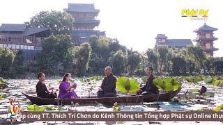 Hỏi Đáp Phật Pháp | Đón Tết Thế Nào Cho An Lạc | Thầy Trí Chơn