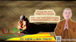 Trung bộ 77  Ðại kinh Sakuludàyi phần 2
