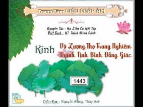 """Giảng Huyền Nghĩa """"Kinh Vô Lượng Thọ"""" (Việt Dịch: HT. Thích Minh Cảnh)"""